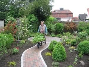 Neupflanzungen & Gehölzpflege